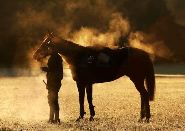 Jockey Tony McCoy with Barbers Shop on the gallops at Severn Barrow, during a United Racing Media Day at Oaksey House, Lambourn in October 2010 (David Davies/PA)