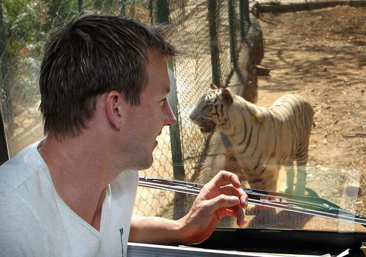 BANGALORE, INDIA - MARCH 12:  Brett Lee of Australia watches a white tiger through the window of a safari bus during a visit to the Bannerghatta Biological Park on March 12, 2011 in Bangalore, India.  (Photo by Hamish Blair/Getty Images)