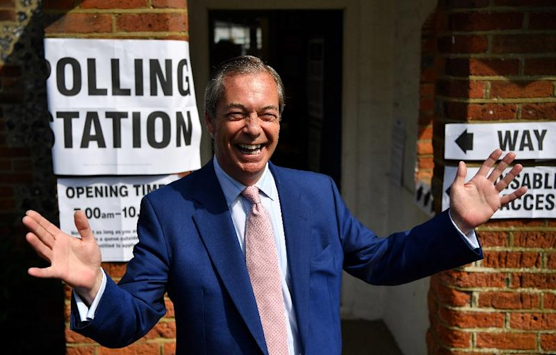 Brexit Party chief Nigel Farage has rejected any tie-up with France's Le Pen (AFP Photo/Ben STANSALL)