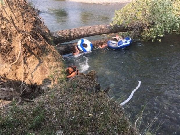 Trail, B.C., resident Katelyn Olson and her family and friends were stuck in the strong current under two fallen trees in Kettle River near Grand Forks, B.C., on Thursday. (Submitted by Darrell Kube - image credit)