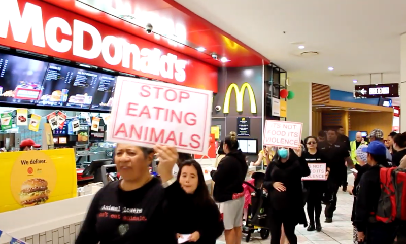 vegan protesters from Direct Action Everywhere demonstrate meat consumption in an Auckland shopping centre