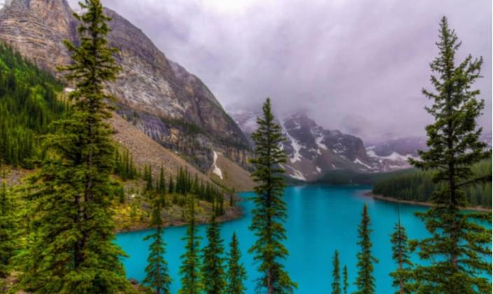 In honour of Nature Photography Day, check out these user-submitted photos