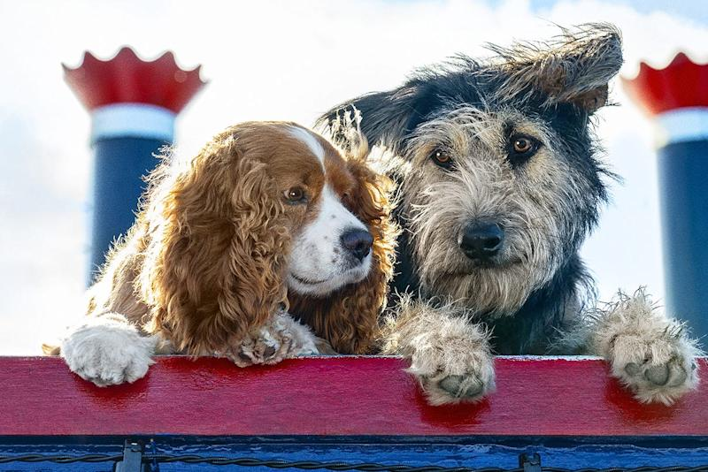 """Romance sparks between a cocker spaniel (voiced by Tessa Thompson, left) and a streetwise mutt (Justin Theroux) in """"Lady and the Tramp."""""""