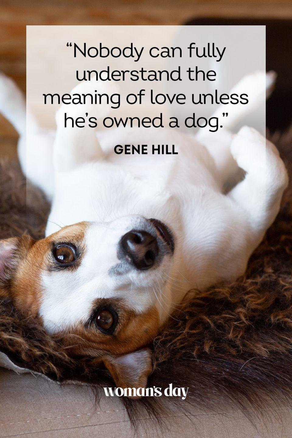 """<p> """"Nobody can fully understand the meaning of love unless he's owned a dog."""" </p>"""