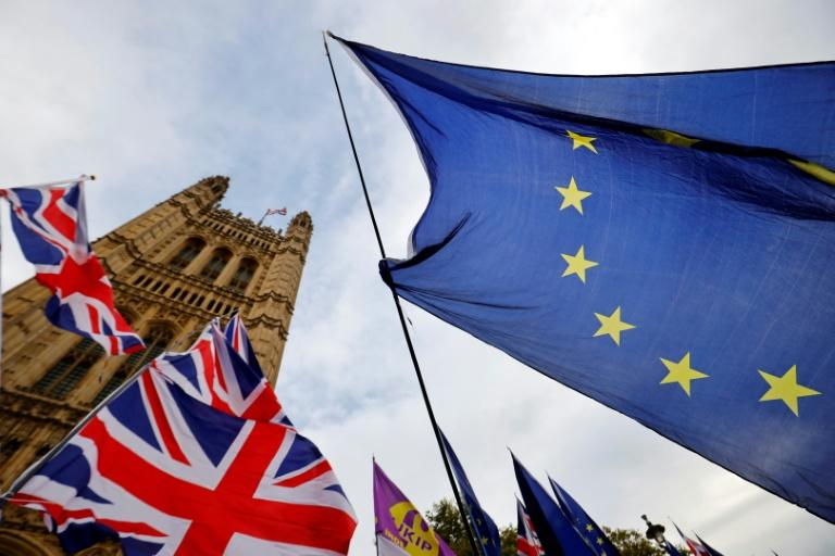 Britain is due to leave the EU at the end of the month (AFP Photo/Tolga Akmen)