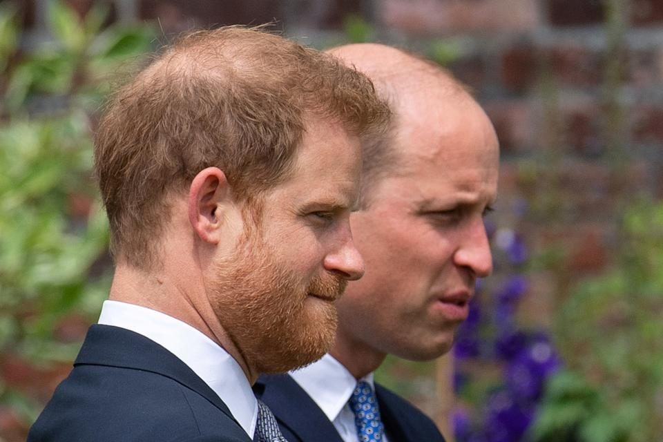 Britain's Prince William, The Duke of Cambridge, and Prince Harry, Duke of Sussex, attend the unveiling of a statue they commissioned of their mother Diana, Princess of Wales, in the Sunken Garden at Kensington Palace, London, Britain July 1, 2021. Dominic Lipinski/Pool via REUTERS