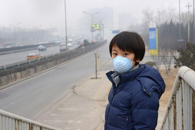 Illegal ozone-depleting gases traced to China: study