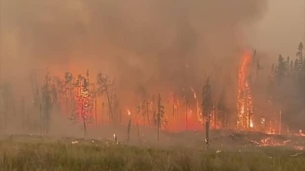 A wildfire tears through trees near Bloodvein First Nation. The community was evacuated last week and has no sense of when they'll be able to return home. (Submitted by Ryan Klassen - image credit)