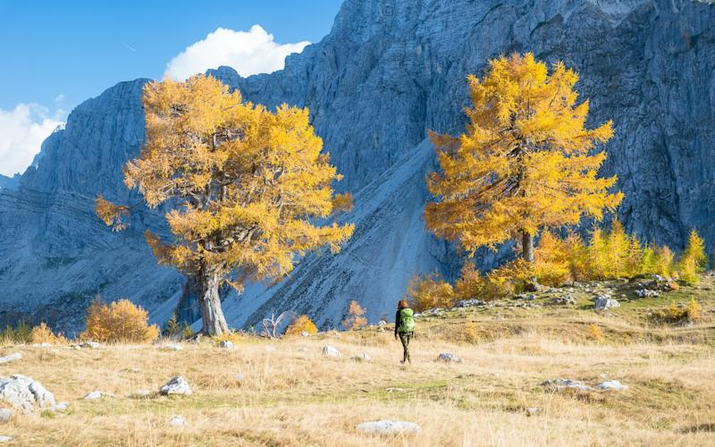 Hiking is a national pastime in Slovenia - getty