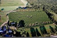 """<p>Miles and miles of corn-filled paths (plus a relaxing hayride) make a trip to <a href=""""http://www.getlostinthemaze.com"""" rel=""""nofollow noopener"""" target=""""_blank"""" data-ylk=""""slk:Ekonk Hill"""" class=""""link rapid-noclick-resp"""">Ekonk Hill</a> well worth your time. If your kids love farm animals, there's even more reason to get your family to this countryside haven: You can visit the barn after your maze journey is complete. </p><p><a class=""""link rapid-noclick-resp"""" href=""""https://go.redirectingat.com?id=74968X1596630&url=https%3A%2F%2Fwww.tripadvisor.com%2FAttraction_Review-g33843-d8738219-Reviews-Ekonk_Hill_Turkey_Farm-Moosup_Plainfield_Mystic_Country_Connecticut.html&sref=https%3A%2F%2Fwww.countryliving.com%2Flife%2Ftravel%2Fg22717241%2Fcorn-maze-near-me%2F"""" rel=""""nofollow noopener"""" target=""""_blank"""" data-ylk=""""slk:PLAN YOUR TRIP"""">PLAN YOUR TRIP</a></p>"""