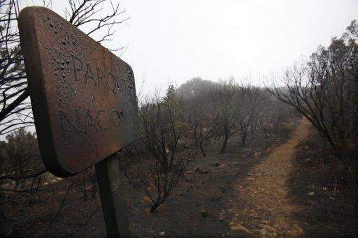 "A burnt sign reading ""National Park"" and burnt trees remain after a wildfire swept through the Garajonay national park on the island of La Gomera. Firefighters made strides Tuesday against wildfires on Spain's Canary Islands, but the country was on alert for more blazes due to an impending heatwave"