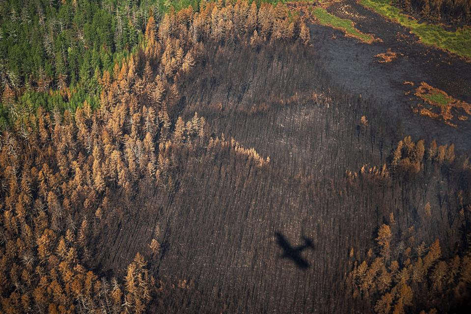 """This aerial picture shows the shadow of an aircraft of the Air Forest Protection Service flying over a burned forest outside the village of Berdigestyakh, in the republic of Sakha (Yakutia) in Siberia, Russia on July 27.<span class=""""copyright"""">Dimitar Dilkoff—AFP/Getty Images</span>"""