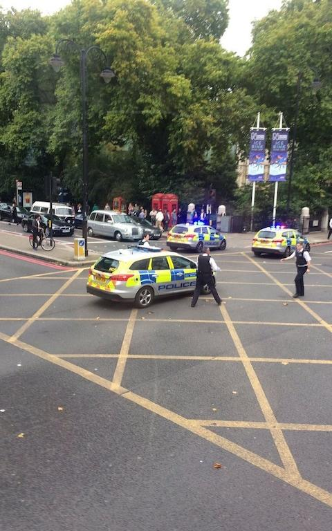 Police cars outside the Natural History Museum - Credit: RosaRodaNews/Twitter