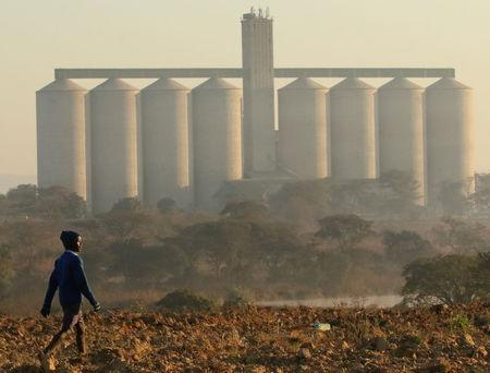 FILE PHOTO: A boy walks on a prepared field in front of grain silos in the farming area of Chinhoyi