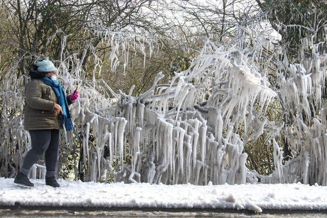 A woman takes a photograph of large icicles forming in Epping Forest