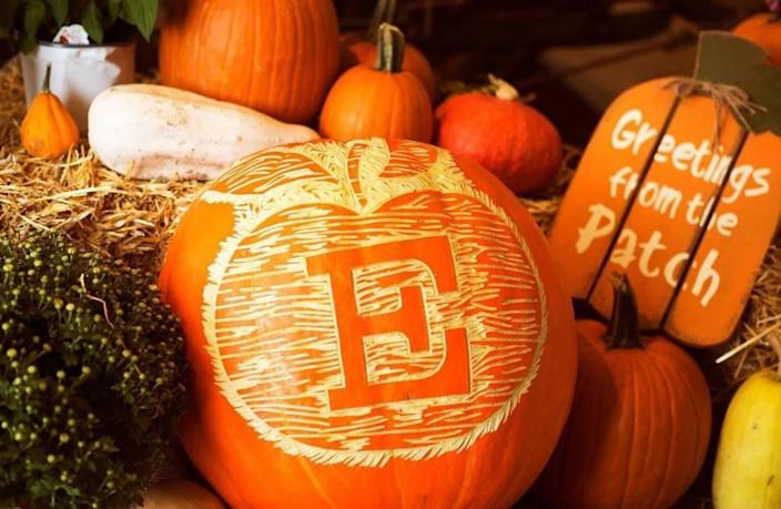 The pick-your-own pumpkin patch at Eckert's Orchard in Versailles opens this weekend.