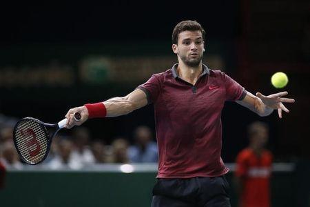 Grigor Dimitrov of Bulgaria returns a shot during his men's singles tennis match against Andy Murray of Britain in the third round of the Paris Masters tennis tournament at the Bercy sports hall in Paris, October 30, 2014. REUTERS/Benoit Tessier (FRANCE - Tags: SPORT TENNIS)