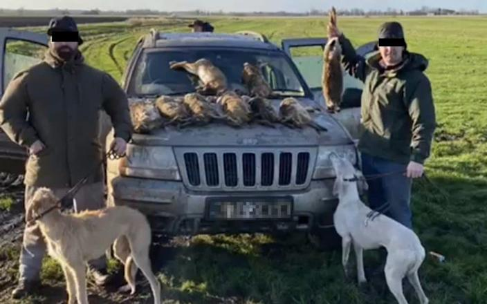 Photograph taken in the East Midlands in 2020 showing a hare coursing gang with their spoils
