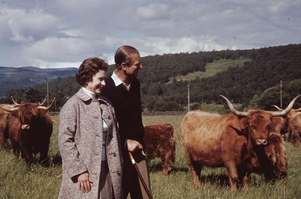 """<p>The Queen and Prince Philip in a field with some highland cattle at Balmoral, <a href=""""https://www.goodhousekeeping.com/uk/lifestyle/travel/a28784827/scotland-holidays-unique-experiences/"""" rel=""""nofollow noopener"""" target=""""_blank"""" data-ylk=""""slk:Scotland"""" class=""""link rapid-noclick-resp"""">Scotland</a> in 1972.</p>"""