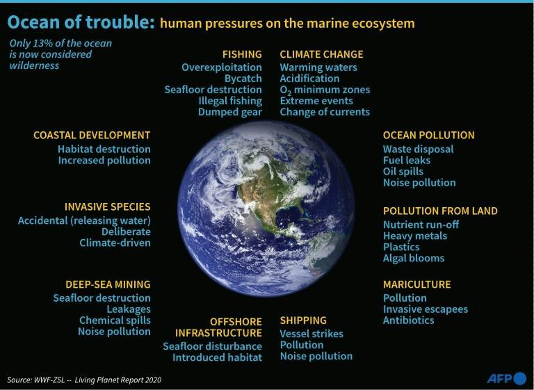 Environmental degradation of the oceans caused by human activity