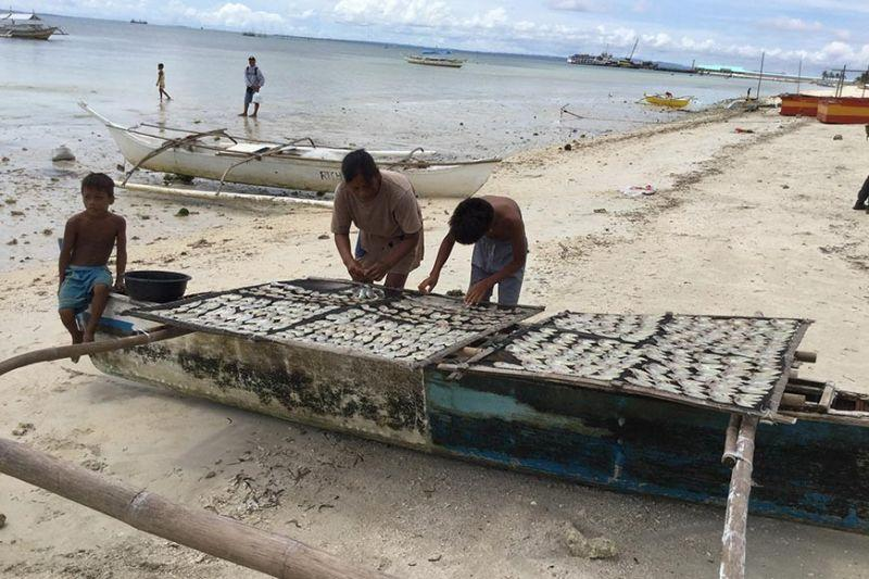 Agri-fishery grads, young hobbyists may  borrow up to P500k as startup fund