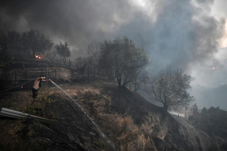 Experts have warned that global warming is increasing both the frequency and intensity of such fires