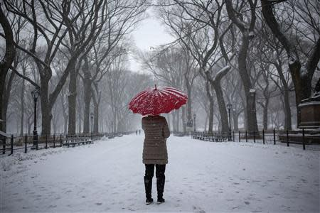 A woman stands with an umbrella during snowfall at Central Park in New York