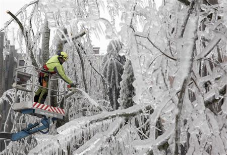A worker cuts ice-covered branches with chainsaw in Postojna February 5, 2014. REUTERS/Srdjan Zivulovic
