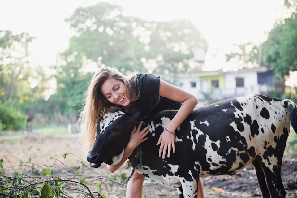 woman hugging a cow