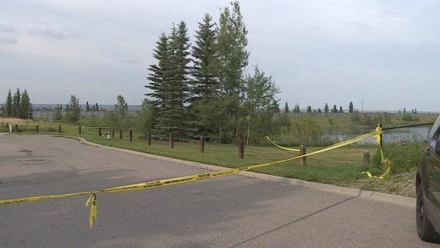 The victim of a midday shooting in the southwest community of Crestmont was declared dead at the scene. Calgary police said they do not believe the shooting was random. (Julie Debeljak-Waddell/CBC - image credit)