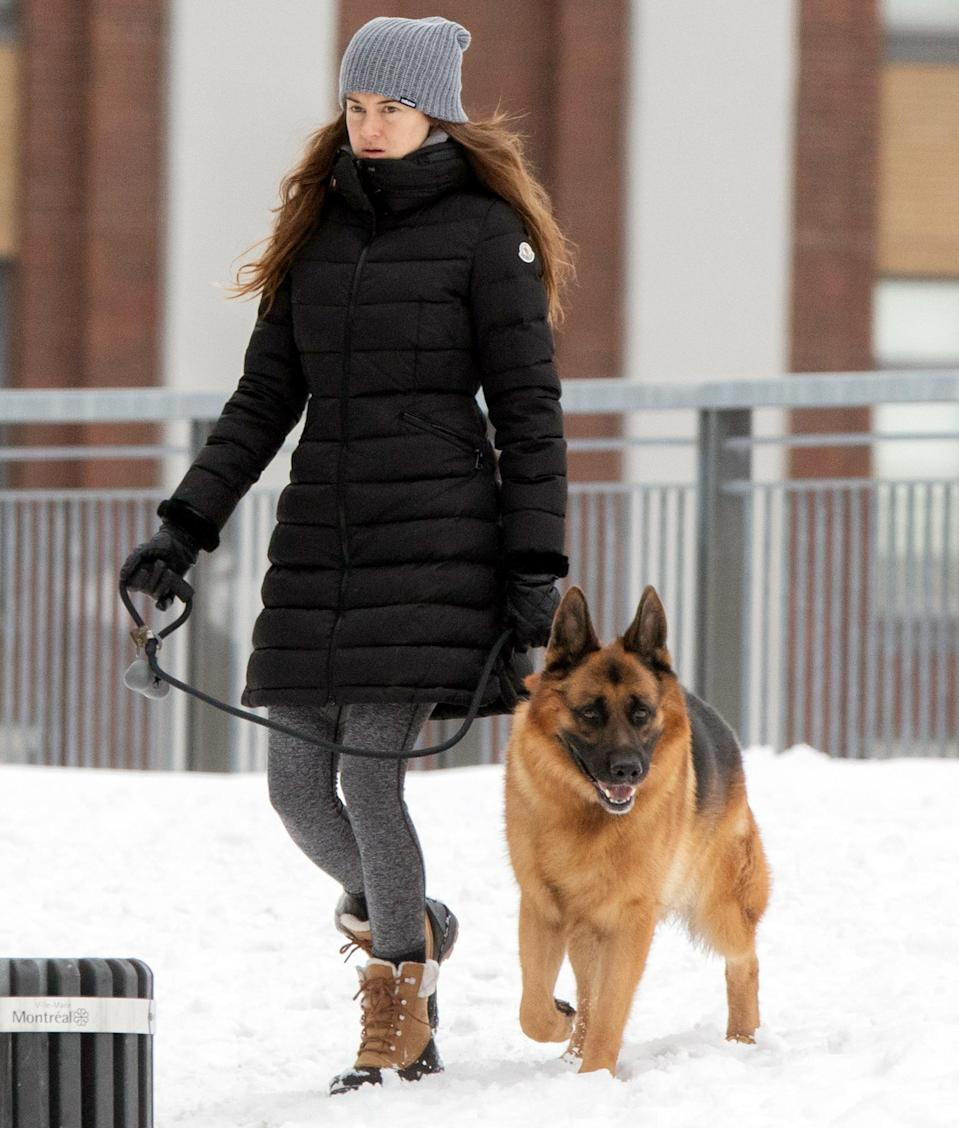 <p>Shailene Woodley bundles up in a winter coat, boots and a beanie to walk her dog in Montreal on Sunday.</p>