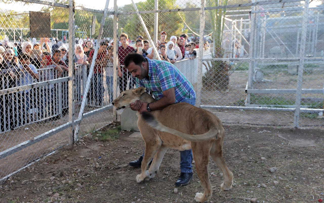 XYB12. Damascus (Syrian Arab Republic), 14/07/2018.- A man hugs a lioness in a zoo installed for the 'al-Sham Gathers us' marketing festival held in the Tishreen public park in Damascus, Syria, 14 July 2018. The event was held by the Damascus Governorate with the cooperation of the ministry of tourism (Damasco, Siria) EFE/EPA/YOUSSEF BADAWI