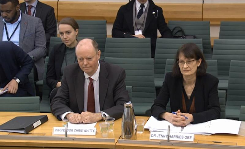 Chief Medical Adviser, Department of Health and Social Care Professor Chris Whitty and Jenny Harries, Deputy Chief Medical Officer for England, Department of Health and Social Care, giving evidence to the Health and Social Care Select Committee at the Houses of Parliaament , London on the subject of preparations for Coronavirus.