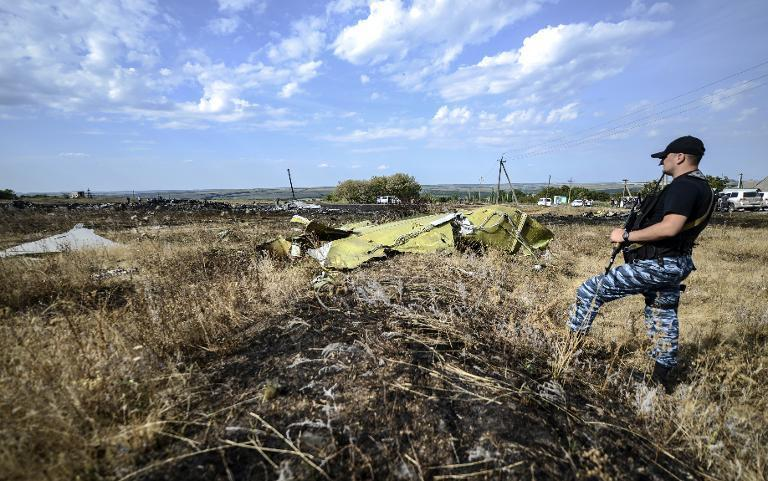 A pro-Russian militant guards debris from Malaysia Airlines flight MH17 which crashed near the Ukrainian village of Hrabove (Grabovo), on July 25, 2014