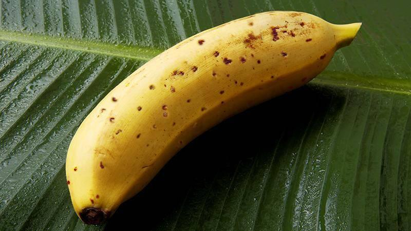 The Mongee Banana costs £4.20 (Pic: D&T Farm)