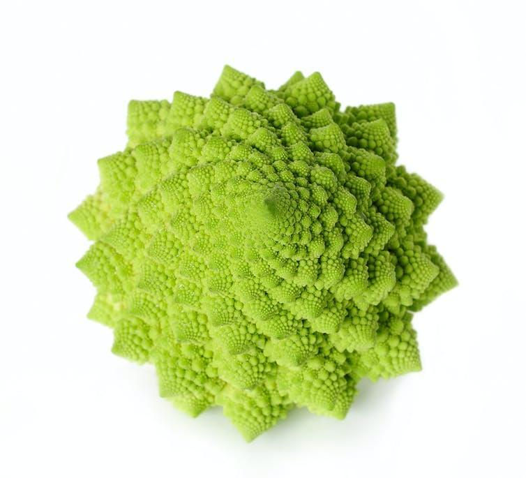 Green cauliflower in many-pointed star shape with spiral patterns.