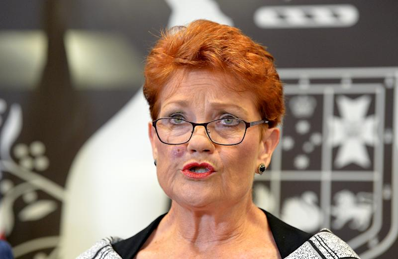 BRISBANE, AUSTRALIA - MARCH 28: One Nation leader Pauline Hanson speaks during a press conference on March 28, 2019 in Brisbane, Australia. Pauline Hanson is under increasing pressure following an undercover investigation by news organisation Al Jazeera, which has released hidden camera footage of Hanson appearing to suggest the 1996 Port Arthur massacre, where a gunman shot and killed 35 people in Tasmania, was a government conspiracy. Other footage from the Al Jazeera investigation show senior One Nation figures James Ashby and Steve Dickson soliciting financial support in the US from the National Rifle Association in a bid to seize the balance of power and weaken Australia's gun laws. (Photo by Bradley Kanaris/Getty Images)