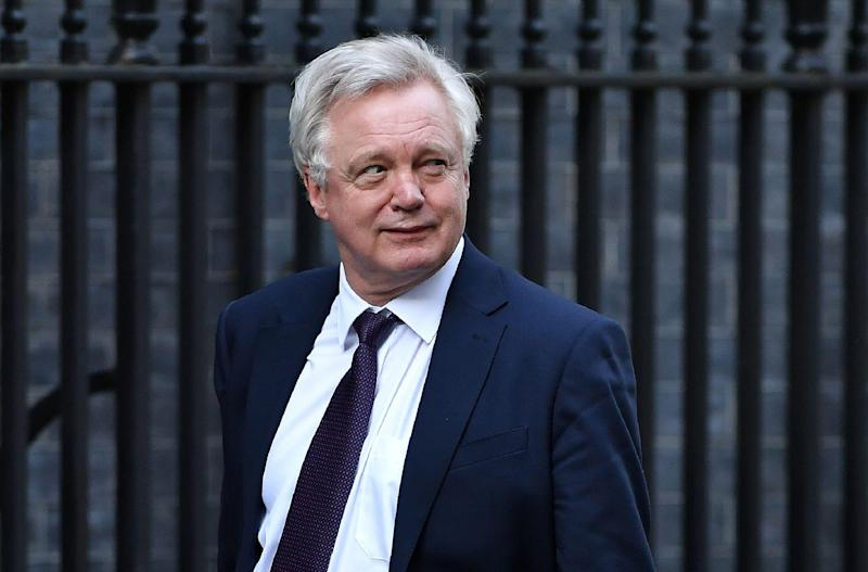 David Davis has backtracked on the Government's threat of withdrawing security cooperation with Europe: AFP/Getty