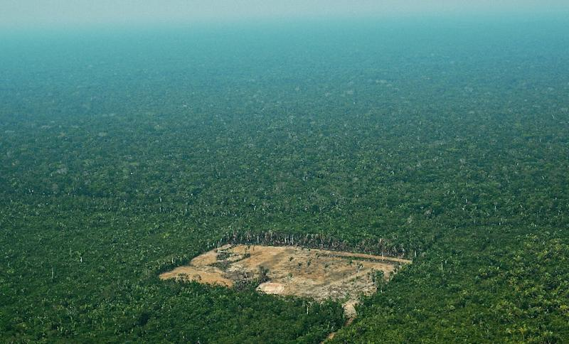 An aerial view from 2017 of deforestation in the Western Amazon region of Brazil, whose President Jair Bolsonaro is considering withdrawing from the Paris climate accord to curb global warming (AFP Photo/CARL DE SOUZA)