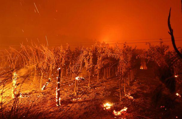 PHOTO: Grape vines burn at Chateau Boswell Winery as the Glass Fire moves through the area of St. Helena, Calif., Sept. 27, 2020. (Justin Sullivan/Getty Images)