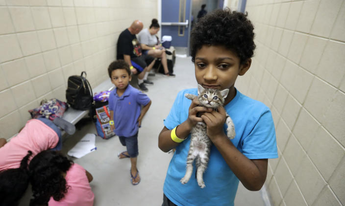 <p>Keedan Garcia, 8, holds his kitten as he waits with his family to be evacuated as the outer bands of Hurricane Harvey begin to make landfall, Friday, Aug. 25, 2017, in Corpus Christi, Texas. (Photo: Eric Gay/AP) </p>