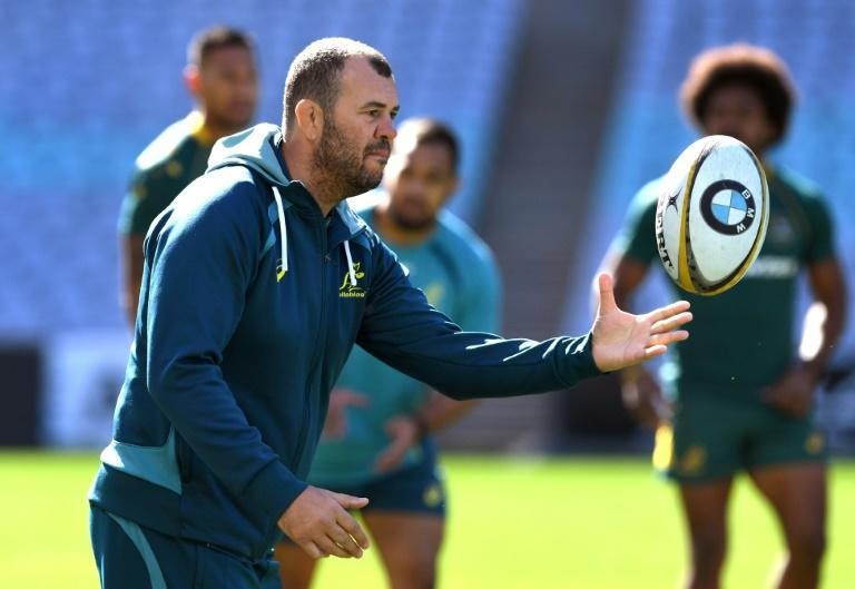 Australian Wallabies' head coach Michael Cheika conducts a training session in Sydney, on August 18, 2017