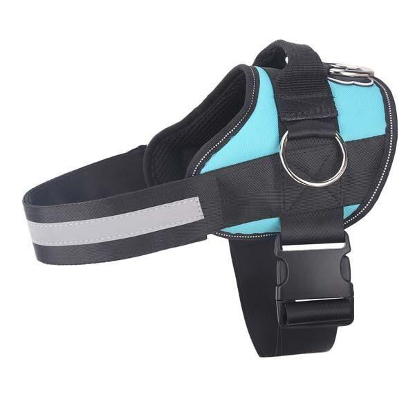 """<p>joyrideharness.com</p><p><strong>$34.95</strong></p><p><a href=""""https://joyrideharness.com/products/pug-life-harness-teal?variant=29209964773478&wickedsource=google&wickedid=492929248259&wtm_campaign=12128562397&wtm_content=122402325048&gclid=Cj0KCQjwpdqDBhCSARIsAEUJ0hPAT27puXxvElvrQeBPJY1CDYX2oXwoHNHS8LPh2cYMe1ceUGs4ciIaAi9gEALw_wcB"""" rel=""""nofollow noopener"""" target=""""_blank"""" data-ylk=""""slk:Shop Now"""" class=""""link rapid-noclick-resp"""">Shop Now</a></p><p>While harnesses are supposed to make it easier to walk your dog, many of them are complicated to put on. The Joyride harness goes on in about two seconds and is effective against pulling.</p>"""