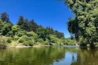 "<p><strong>Zoom out. What's the big picture here?</strong> Just over an hour from San Francisco, Burke's Canoe Trips makes for a perfect day's excursion into the wild. Located under the towering redwoods, the little office house and silver canoes here may remind you of summer camp. Pick one out and then get ready for a 10 mile ride downstream. <a href=""https://www.cntraveler.com/story/best-coolers?mbid=synd_yahoo_rss"" rel=""nofollow noopener"" target=""_blank"" data-ylk=""slk:Pack your cooler with provisions"" class=""link rapid-noclick-resp"">Pack your cooler with provisions</a> (no alcohol or glass bottles please), <a href=""https://www.cntraveler.com/gallery/best-sunscreen-you-can-buy?mbid=synd_yahoo_rss"" rel=""nofollow noopener"" target=""_blank"" data-ylk=""slk:slather some sunscreen on your face"" class=""link rapid-noclick-resp"">slather some sunscreen on your face</a>, <a href=""https://www.cntraveler.com/story/the-best-sun-protection-hats?mbid=synd_yahoo_rss"" rel=""nofollow noopener"" target=""_blank"" data-ylk=""slk:don't forget a hat"" class=""link rapid-noclick-resp"">don't forget a hat</a>, and enjoy some of the best scenery in Northern California. Stop at the sandy beaches for a picnic and a swim and feel the pleasant push of the mellow current. At the end of the line, leave the canoe on the shore, and, in keeping with the summer camp vibes, a vintage school bus will take you back to your car. Usually, you don't need a reservation, but it never hurts to make one, especially on the weekend. </p> <p><strong>Tell us about your fellow paddlers.</strong> You may not see any. You don't get matched with strangers here—it's just your group. The canoes fit up to two adults and two children who must be over five years old. Everyone must be able to swim. Be sure to read their FAQs for all the rules.</p> <p><strong>Are there guides?</strong> You're on your own. Just follow the river.</p> <p><strong>Anything we'll be remembering weeks or months or years from now?</strong> You will be amazed by the serenity and calmness that radiates from the green waters of the Russian River and surrounding forest.</p>"