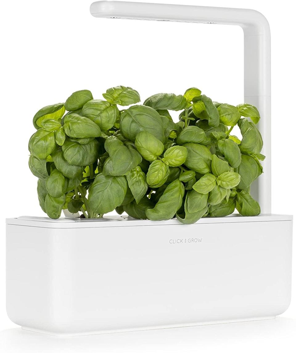 <p>If you live in a small apartment and don't have an outdoor space of your own, get this <span>Click and Grow Smart Garden 9 Indoor Home Garden</span> ($100) to grow your own produce. The set includes three mini tomato, basil, and green lettuce plant pods.</p>