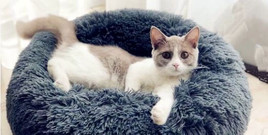 Photo credit: Marshmallow Cat Bed