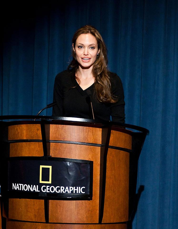 """Angelina Jolie and Brad Pitt marked World Refugee Day by donating $1 million to a U.N. agency helping displaced Pakistanis and making media appearances to discuss the plight of refugees. Paul Morigi/<a href=""""http://www.wireimage.com"""" target=""""new"""">WireImage.com</a> - June 18, 2009"""