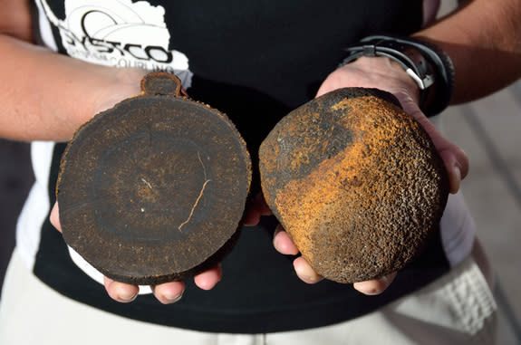 Manganese nodules discovered on the deep seafloor in January 2015.