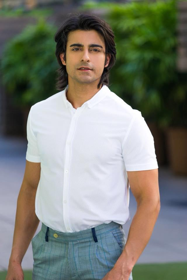 <p>He had been on many TV shows, but it was Sanjay Leela Bhansali's Saraswatichandra that gave him his, 'I have arrived' moment. The character of Saraswatichandra had a certain depth that had all television fans gravitating towards the actor. In 2013, Gautam was appraised with the title of Most Fit Actor Male by Zee Gold Awards. His enchanting personality also got him anchoring gigs that proved to be very successful. </p>