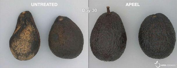 PHOTO: An image from Apeel Sciences shows treated and untreated avocados. (Apeel Sciences)